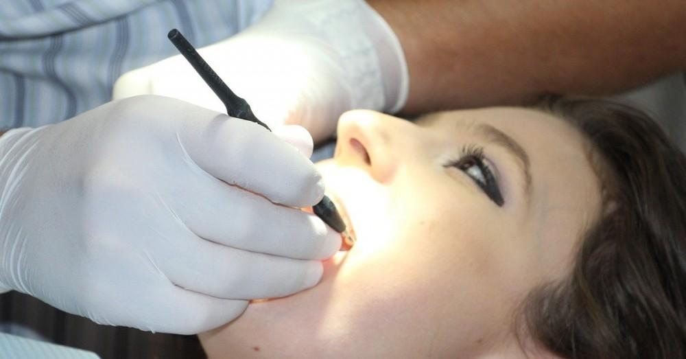 Wissenschaftler haben Bauplan der Zahnzellen entdeckt