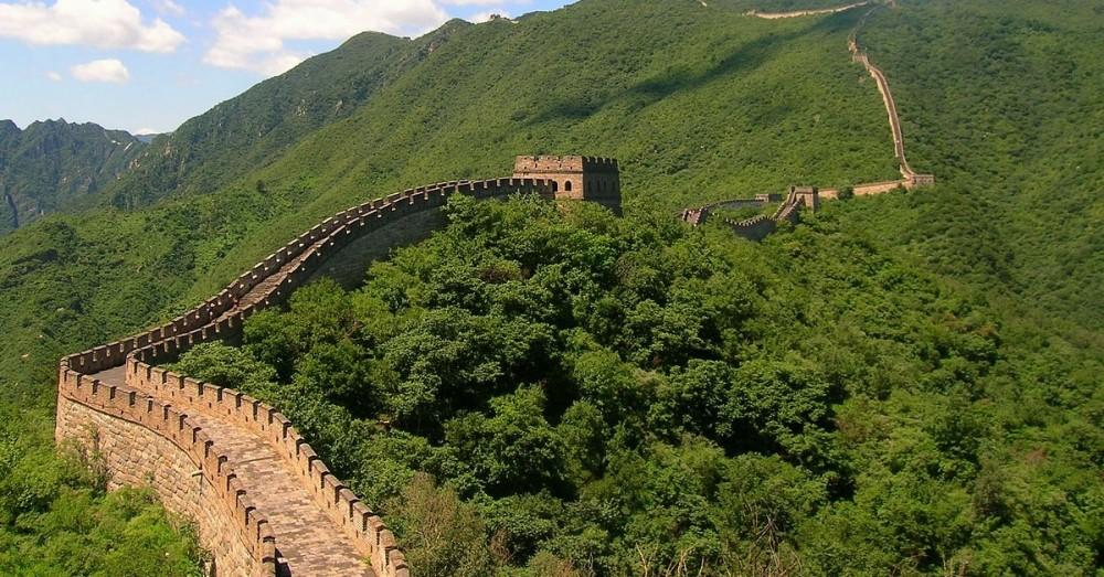 Aufforstung in China