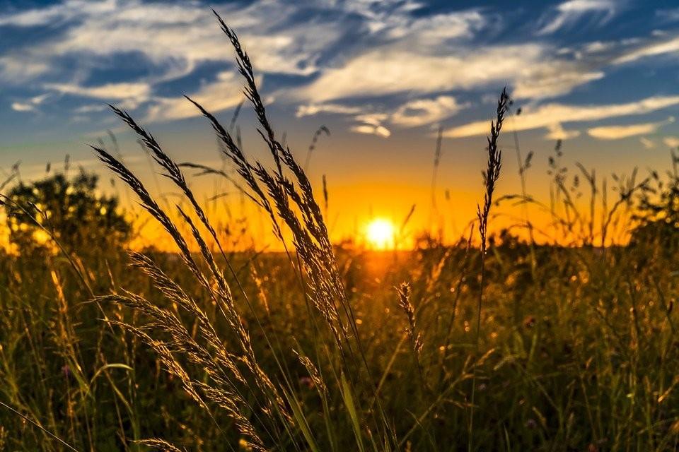 Die Sonnenseiten des Lebens