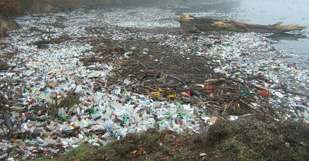Plastic Fischer holt Müll aus Flüssen