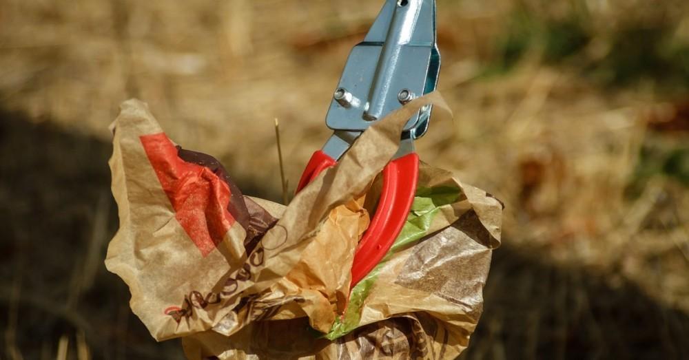 35000 Freiwillige sammeln Müll