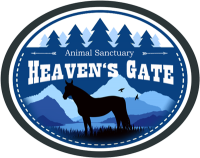 Heaven's Gate - Urlaub in den Rocky Mountains in Kanada