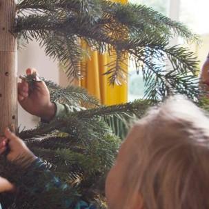 Der erste echte Weihnachtsbaum, der keiner ist und die Umwelt schont