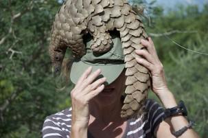 Schutzmaßnahmen für bedrohte Schuppentiere