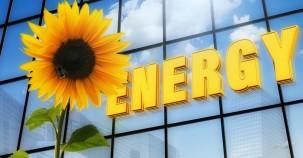 Neues Material aus Kompost macht Solar-Energie-Nutzung effizienter