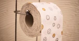 Energieerzeugung mit einer Toilette