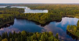 Russlands Wälder wachsen schnell